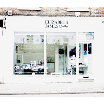 Elizabeth James Art Ltd