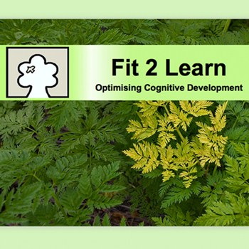 Fit 2 Learn CIC