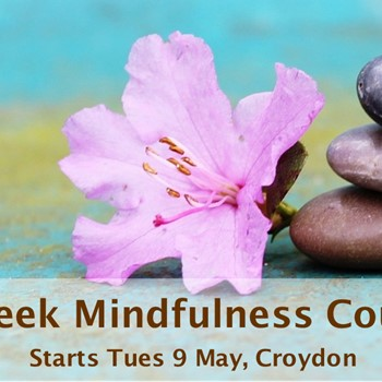 8 week Mindfulness Course